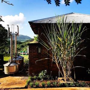 Mhoba distillery