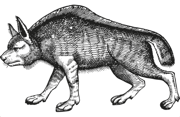 Wolfburn logo