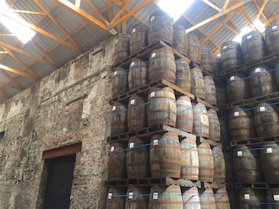 Glen Scotia casks.jpg
