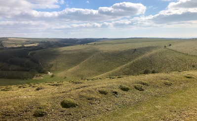 Sussex downs